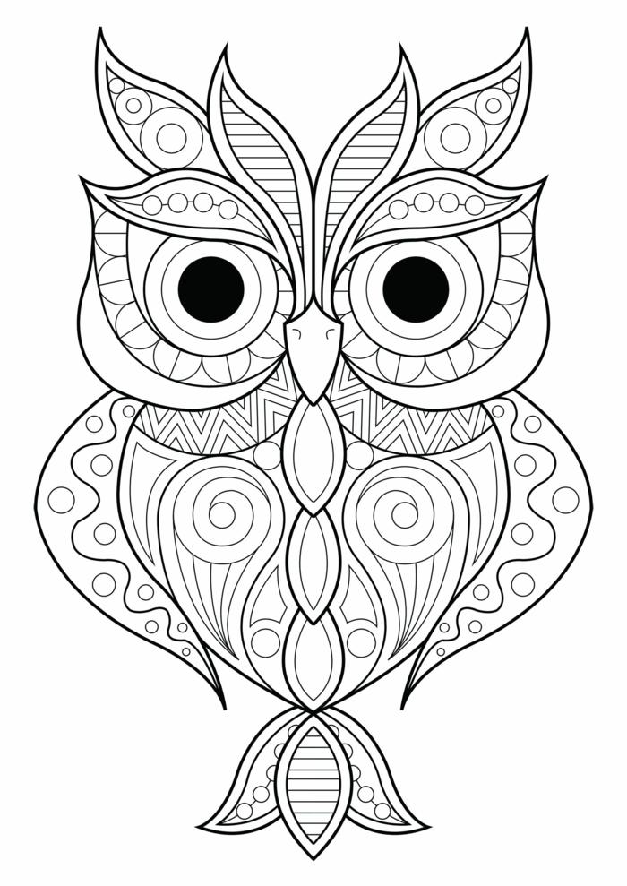 kleine Eule mit schwarzen Augen mit Mandala Formen, Ausmalbilder zum ausdrucken für Kinder und Erwachsene