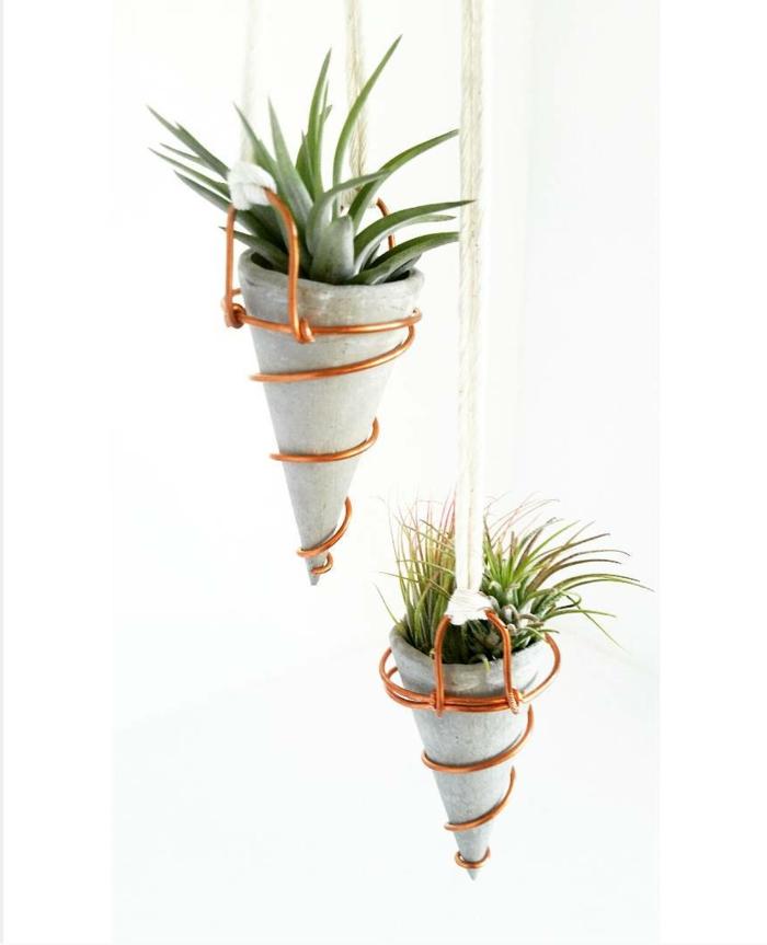 zwei kleine hängende Pflanzer mit Kakteen, Blumenkübel selber machen, Beton Blumentopf