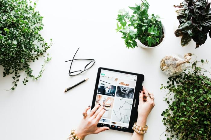 Online Shoppen Lebensmittel und Technik. kleiner Tablett, grüne Pflanzen, Real Discount Prospekt