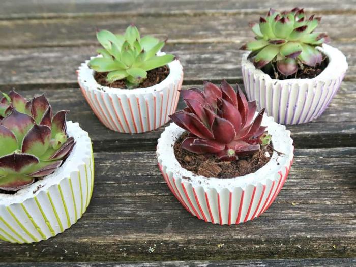 vier kleine Pflanzer mit grünen Pflanzen, Dekoration für den Garten, Pflanzkübel Beton selber machen