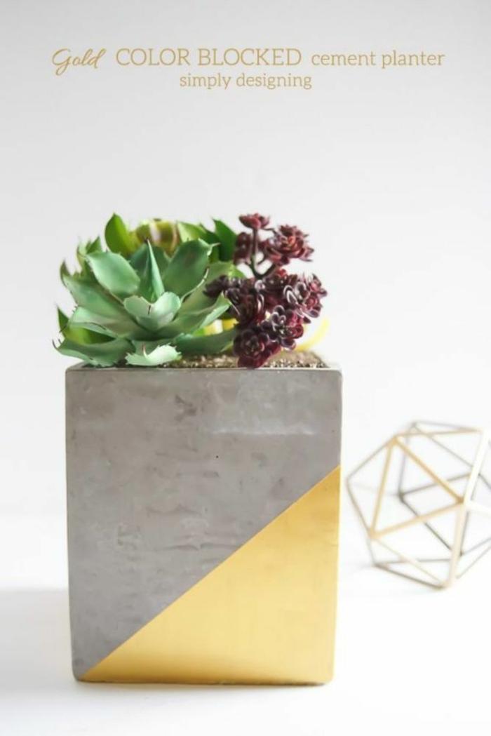 goldener beton Blumentopf, Pflanzer mit Kakteen, Dekoration für die Wohnung, schöne Übertöpfe für drinnen