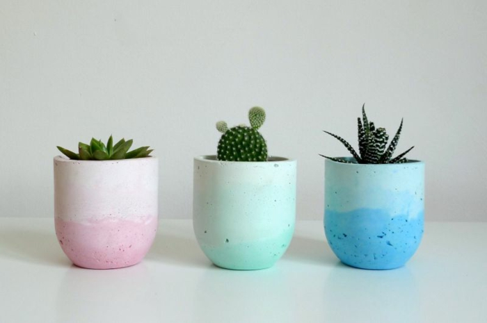 drei in rosa grün und blau gefärbte Blumentöpfe mit kleinen Kakteen, schöne Übertöpfe für Drinnen