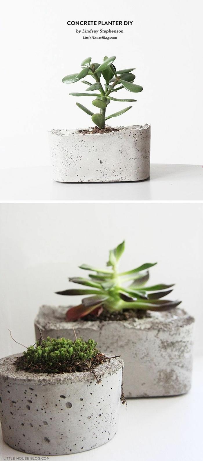 drei große Pflanzer aus Beton, Blumenübertöpfe für Innen, kreative DIY Ideen für Erwachsene