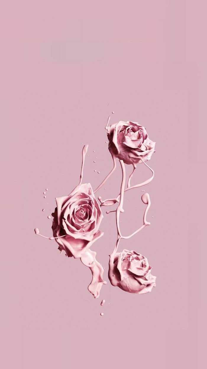 Aesthetic wallpaper iphone, drei animierte Rosen mit fließende aus ihnen Farbe, schöne Hintergrundbilder