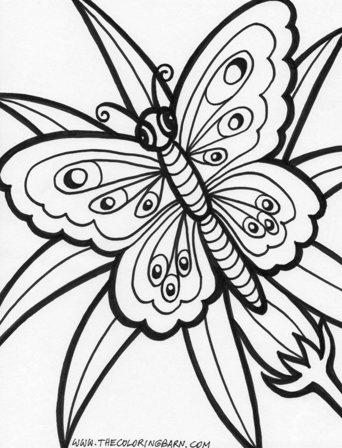 Bild von einem wunderschönen Schmetterling zum ausmalen für Kinder, Ausmalbilder für Mädchen