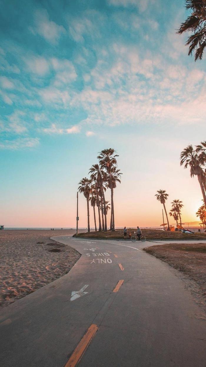 Kalifornischer Strand mit Palmen und Radweg, blauer Himmel und weiße Wolken, aesthetic iphone wallpaper