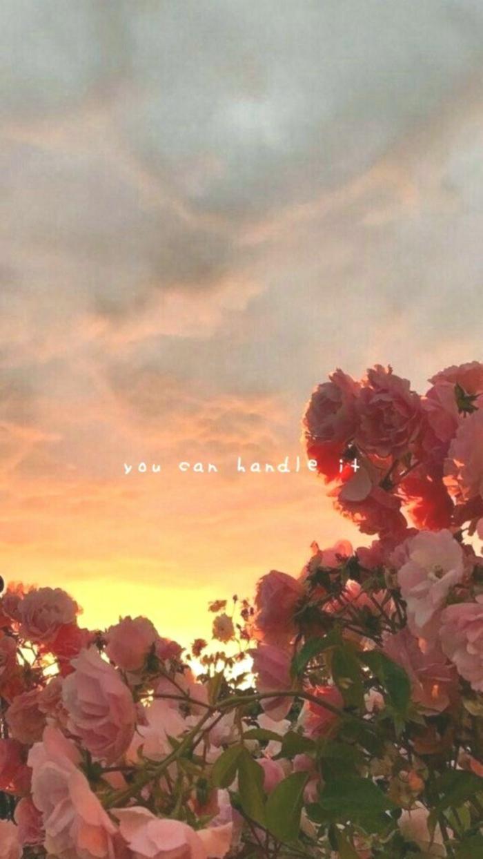 Bild von schönen pinken Rosen am Sonnenuntergang mit motivierendem Spruch, You can handle it, cute iphone wallpaper
