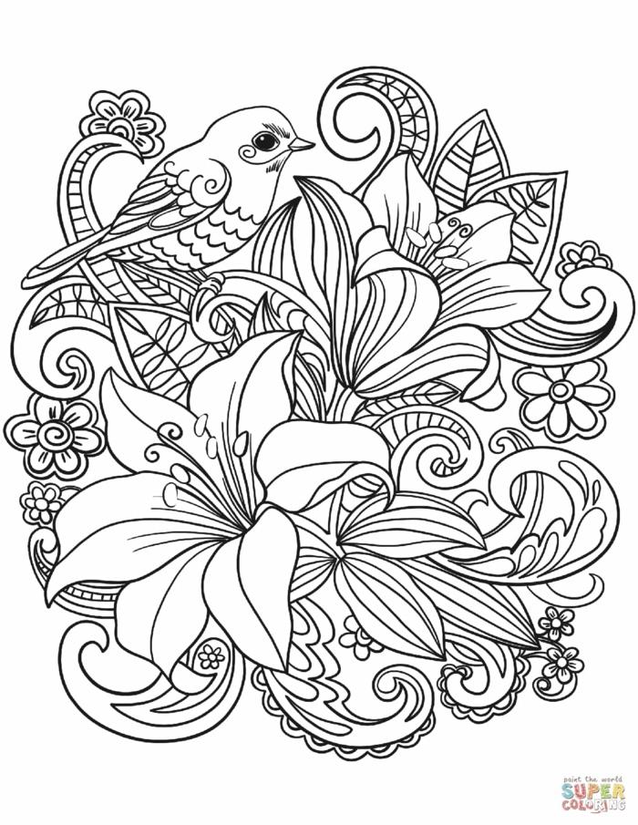 Bild zum ausmalen mit großen und kleinen Blumen, kleiner Vogel, Ausmalbilder für Kinder