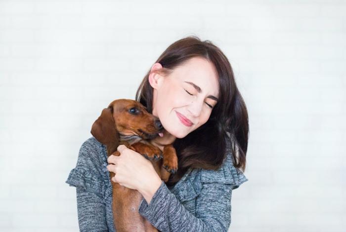 hundepflege, die richtige pflege für hund, haustier haben, vorteile