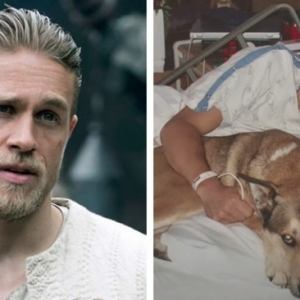 Charlie Hunnam produziert neuen Film über Ben Moon und seinen Hund Denali