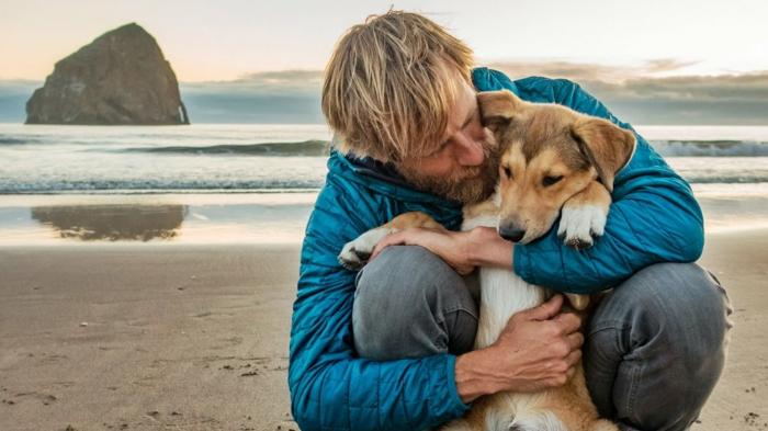 ein mann mit bart und sein kleiner hund denali, meer und strand, der schauspieler charlie hunnam produziert einen film für ben moon und denali