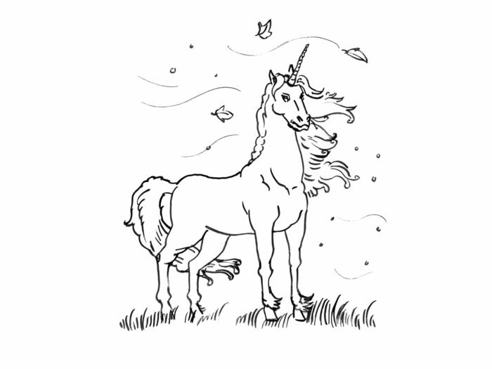 unicorn zeichnen, einhorn zum ausmalen, ausmalbilder für kinder, freie vorlage