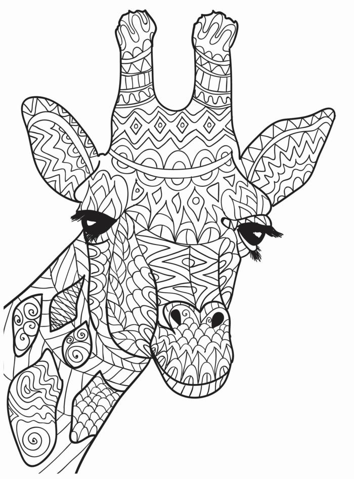 Ausmalbilder Mandala Tiere, Zeichnung von Giraffe mit geometrischen Figuren und Mustern