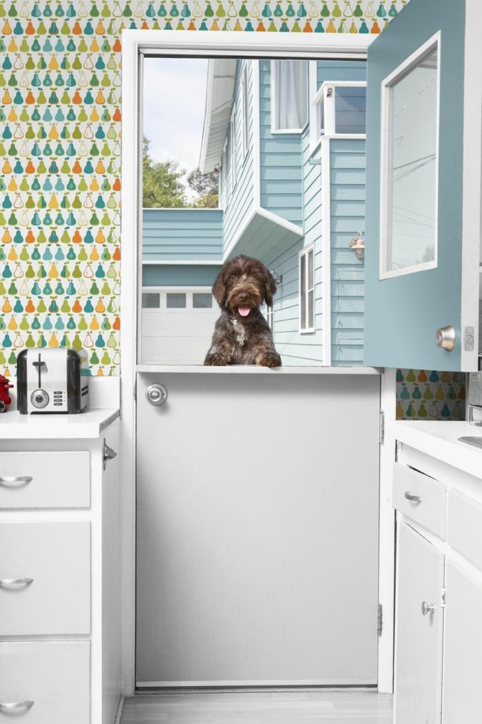 bunte abwaschbare Tapete, Interior Design vom Haus, Küche mit Tür zum Hof, großer brauner Hund