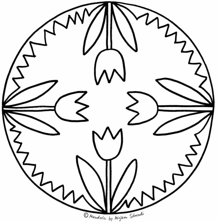 vier gezeichnete Tulpen in einem kreisförmigen Bild, Mandala Malvorlagen zum ausdrucken