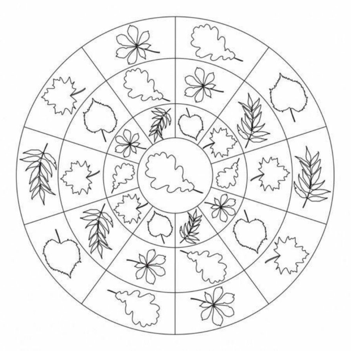 kreisförmiges Bild mit vielen verschiedenen Blättern, Frühlingsbilder zum ausmalen