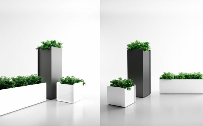 zwei weiße und ein grauer blumenkübel mit grünen pflanzen