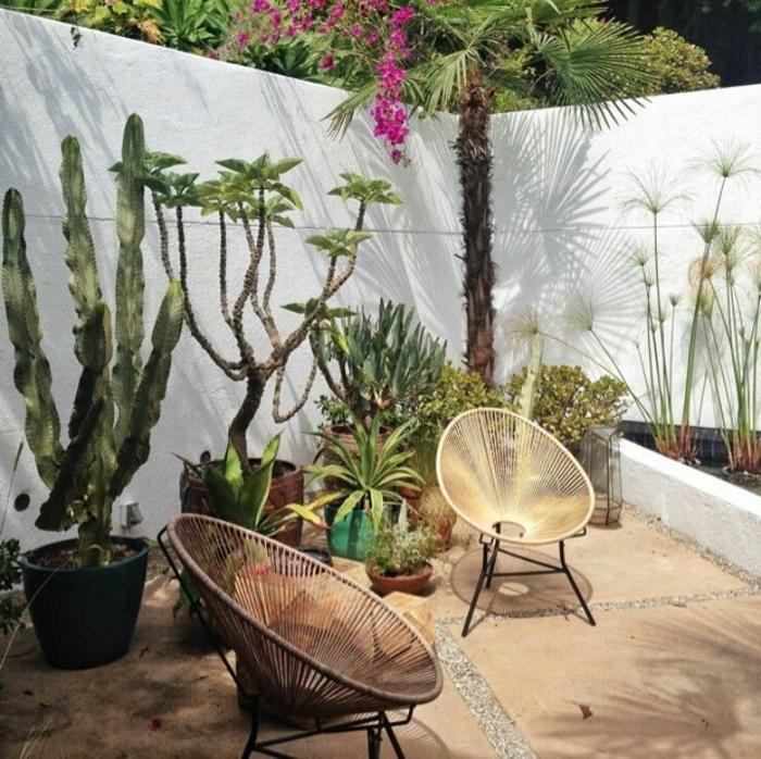 Terrassengestaltung mit Sichtschutz und vielen großen und kleinen Kakteen, zwei moderne Stühle