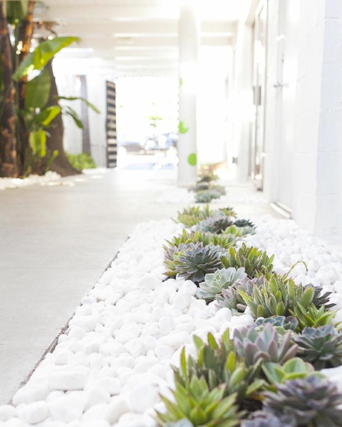 minimalistischer stil weiße steine kleine kakteen gartengestaltung bilder deko ideen mit steinen