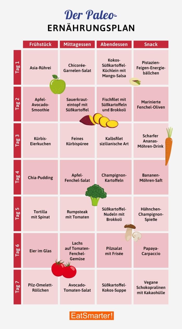 paleo ernährungsplan was muss ich bei paleo essen steinzeitdiät gesunde und ausgewogene ernährung paleo rezepte