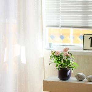 Vorteile der Plissees als Sicht- und Sonnenschutz