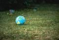 Fokussieren auf internationale Expansion und umweltfreundliche Veranstaltungen
