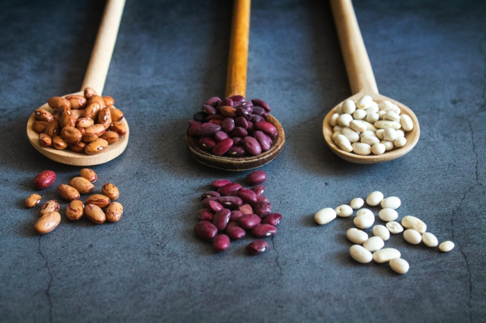 drei kleine löffel aus holz mit drei verschiedenen bohnensorten, vegane ernährung , vegane proteine