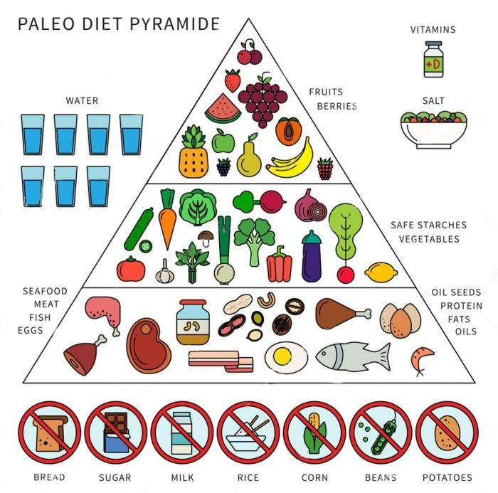 was muss ich bei paleo essen pyriamide mit lebensmitteln bei paleo ernährung paleo ernährungsplan