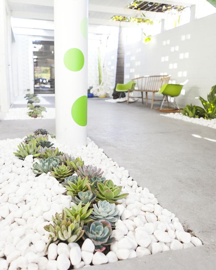 weiße steine und kakteen moderne außeneinrichtung gartengestaltung mit steinen minimalistisches design