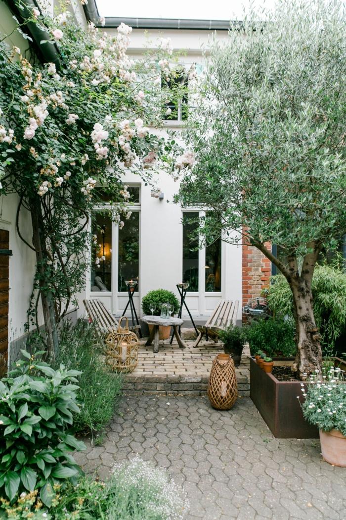 kleinen garten einichten mit vielen pflanzen und bäumen gartengestaltung beispiele und bilder außeneinrichtung 2020
