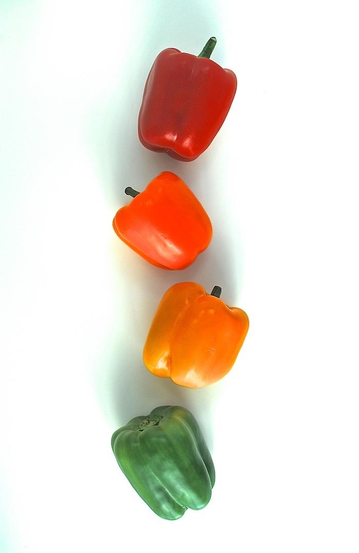 wie kocht man gefüllte paprika vegetarisch gelbe grüne rote ind orange paprikaschoten