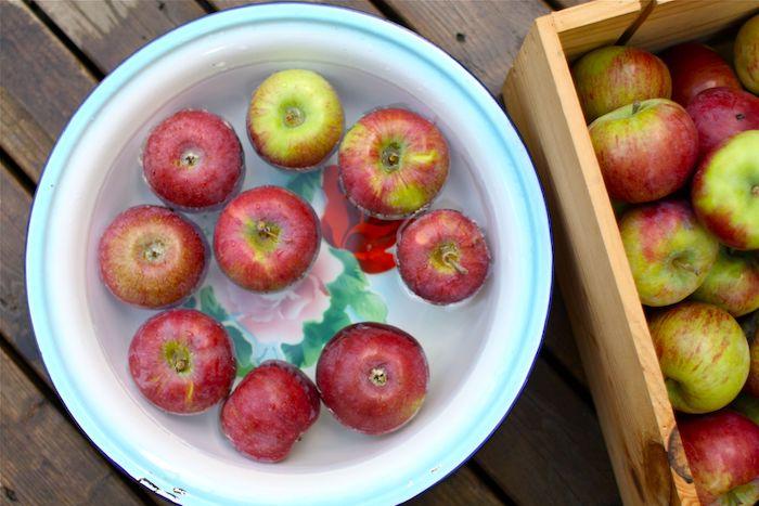 eine schritt für schritt diy anleitung für ein apfelmus eine schüssel mit wasser und roten äpfeln