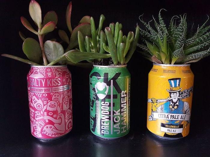 dosen upcycling ideen drei gelbe violette und grüne blumentöpfe mit grünen sukkulenten aus alt mach neu