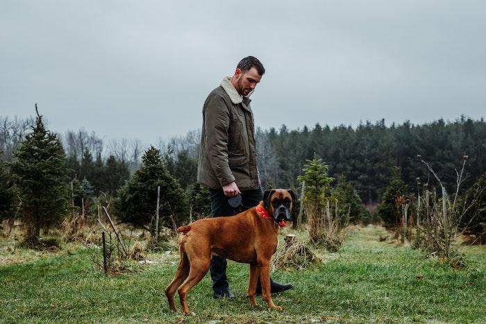 ein brauner hund und mann mit grüner jacke wald und grüne bäume was kann man heute machen gassi gehen