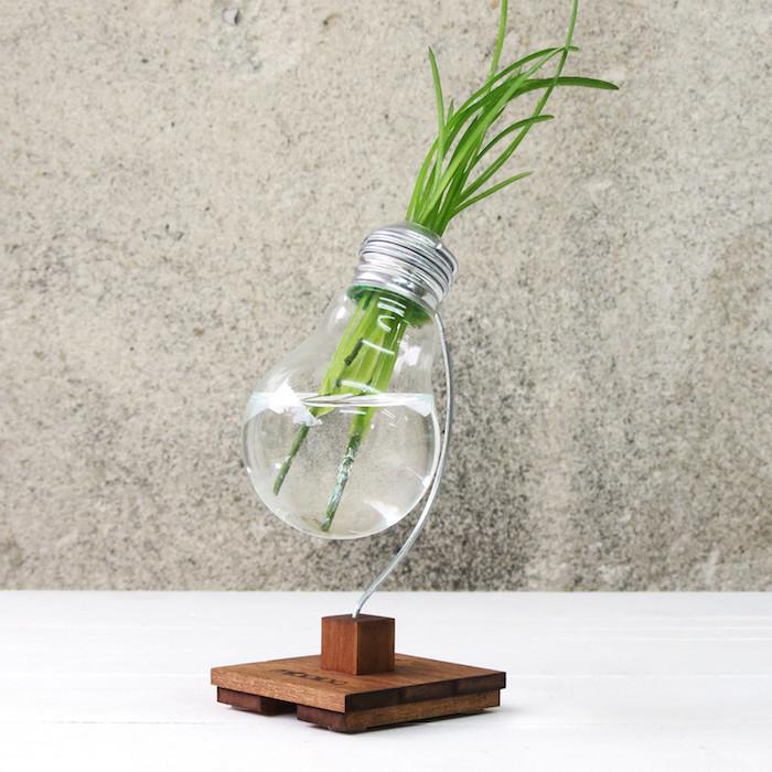 ein kleiner blumentopf aus einer alten glühbirne aus alt mach neu ideen für nachhaltige gescheke