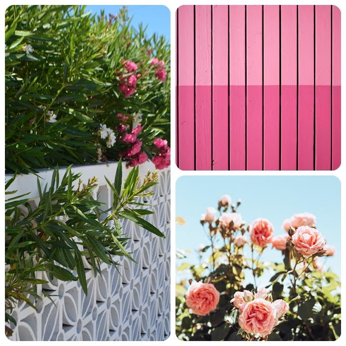 garten gestalten gartengestaltung ideen rosa gartenzaun holzzaun rosen gartenblumen gartenpflanzen