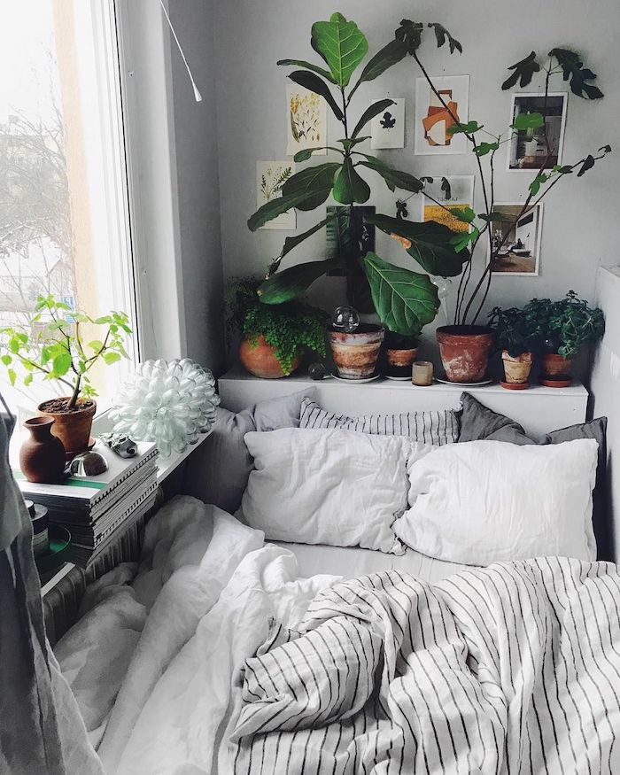 grüne pflanzen dekoration innenausstattung schlafzimmer minimalistisch zimmer tumblr einrichten wie kleine bilder an die wand