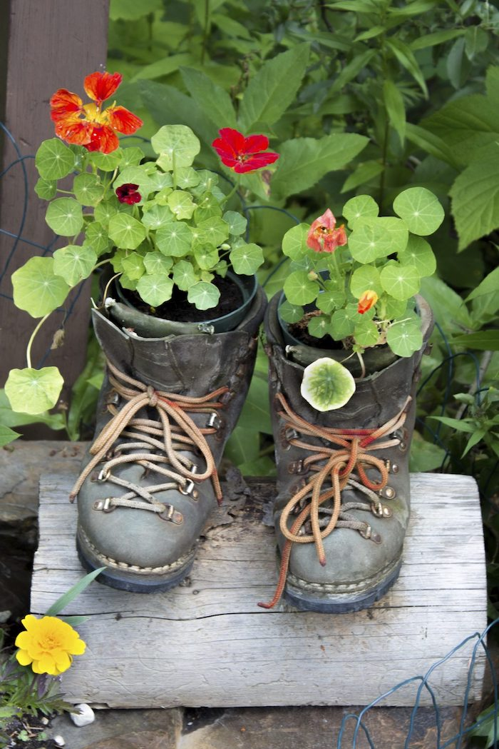 schwarze schuhe mit grünen pflanzen und roten blumen aus alt mach neu garten gestalten ideen