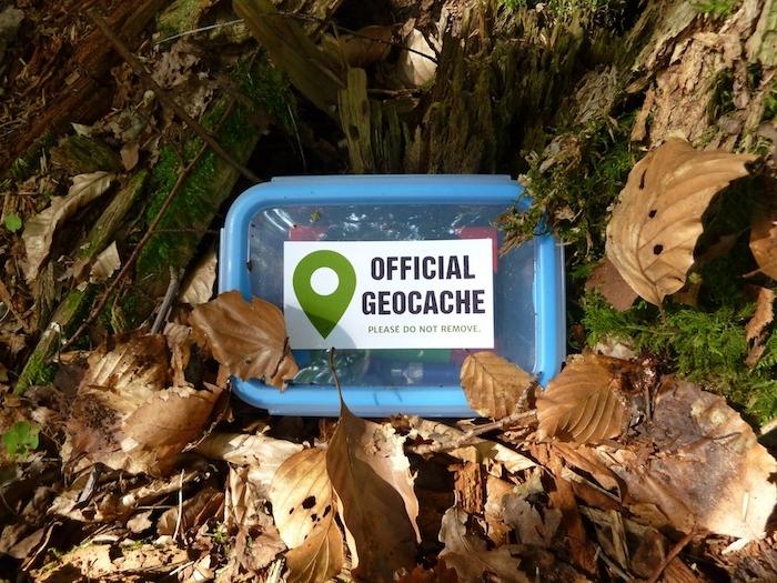was kann man heute machen ideen für kostenlose aktivitäten geocaching blätter von bäumen outdoor