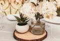 Baumscheiben Deko – exzellente Ideen für Ihr Haus
