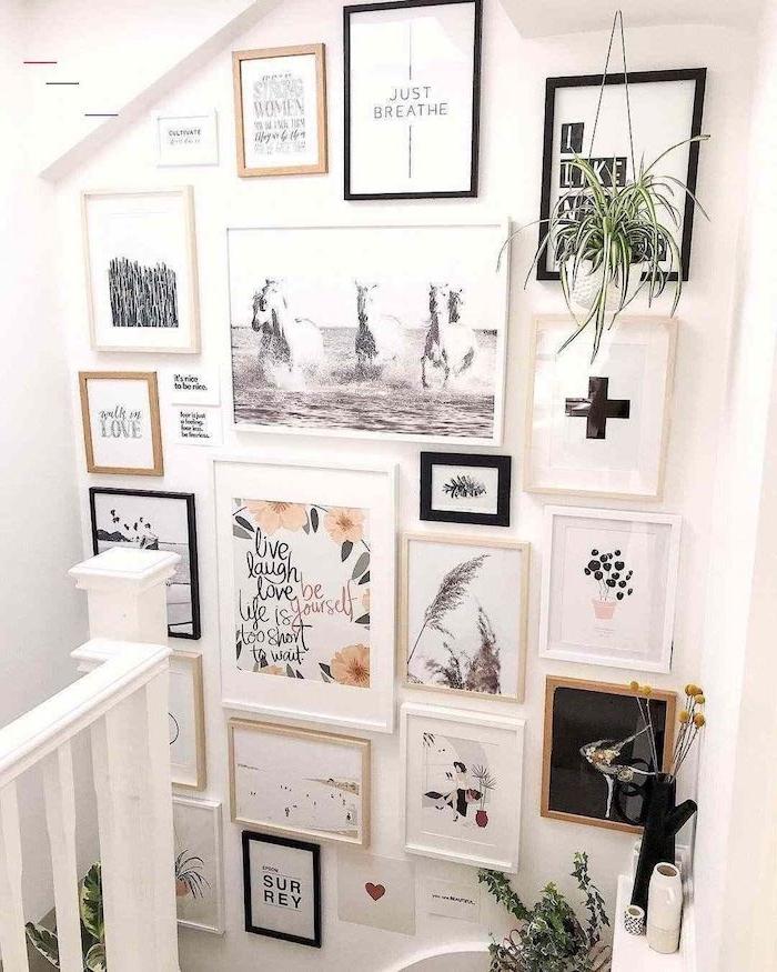 bilderwand gestalten scandi style schwarz weiße fotos skandinavische wanddeko bunte bilde inspirierende zitate hängende grüne pflanze nordischer stil einrichtung