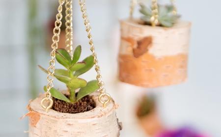 diy ideen schritt für schritt anleitung basteln inspiration birkenstamm deko wohnzimmer kleine grüne sukkulenten dekoration pflanzen anleitung schritt für schritt