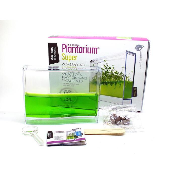 ein plantarium set mit wasser und pflanzen ideen für geschenke für die beste freundin