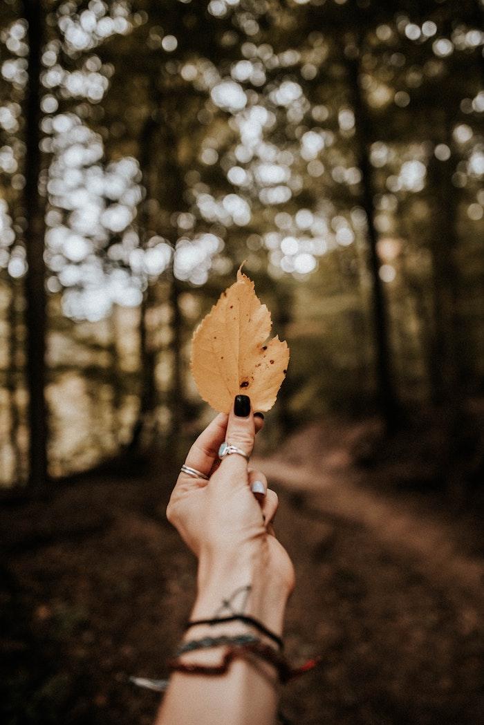 ein wald mit bäumen eine hand mit dungelgrünem nagellack und tattoo und einem großen rinh nageldesign herbst