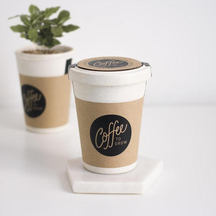 eine tasse kaffee to go eine pflanze ein blumentopf idee für geschenk