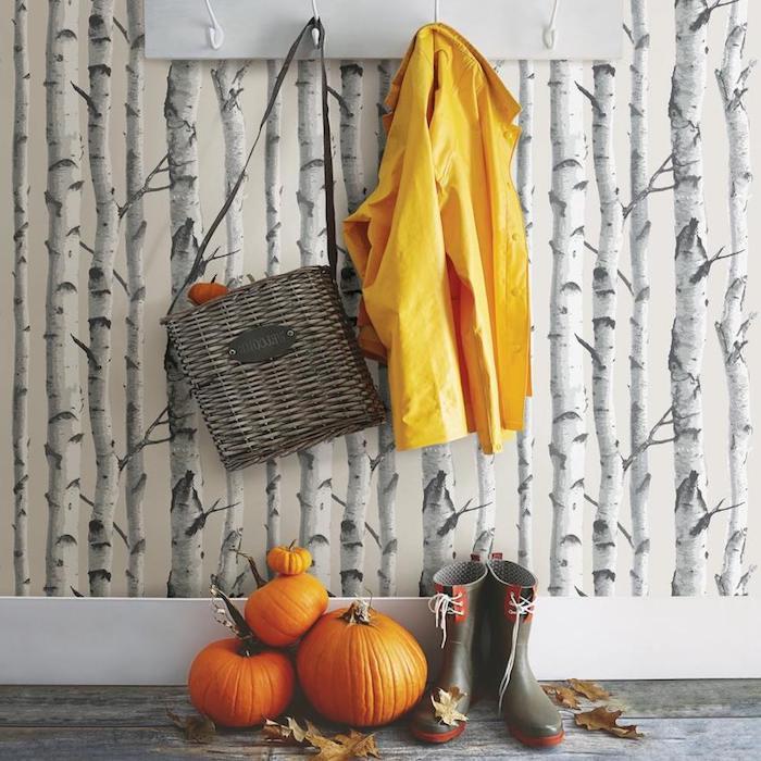 flur einrichtung tapete mit birkenbäume gelbe regenjacke graue gumistiefel kleine und große kürbisse birken deko inspiration ideen inneneinrichtung