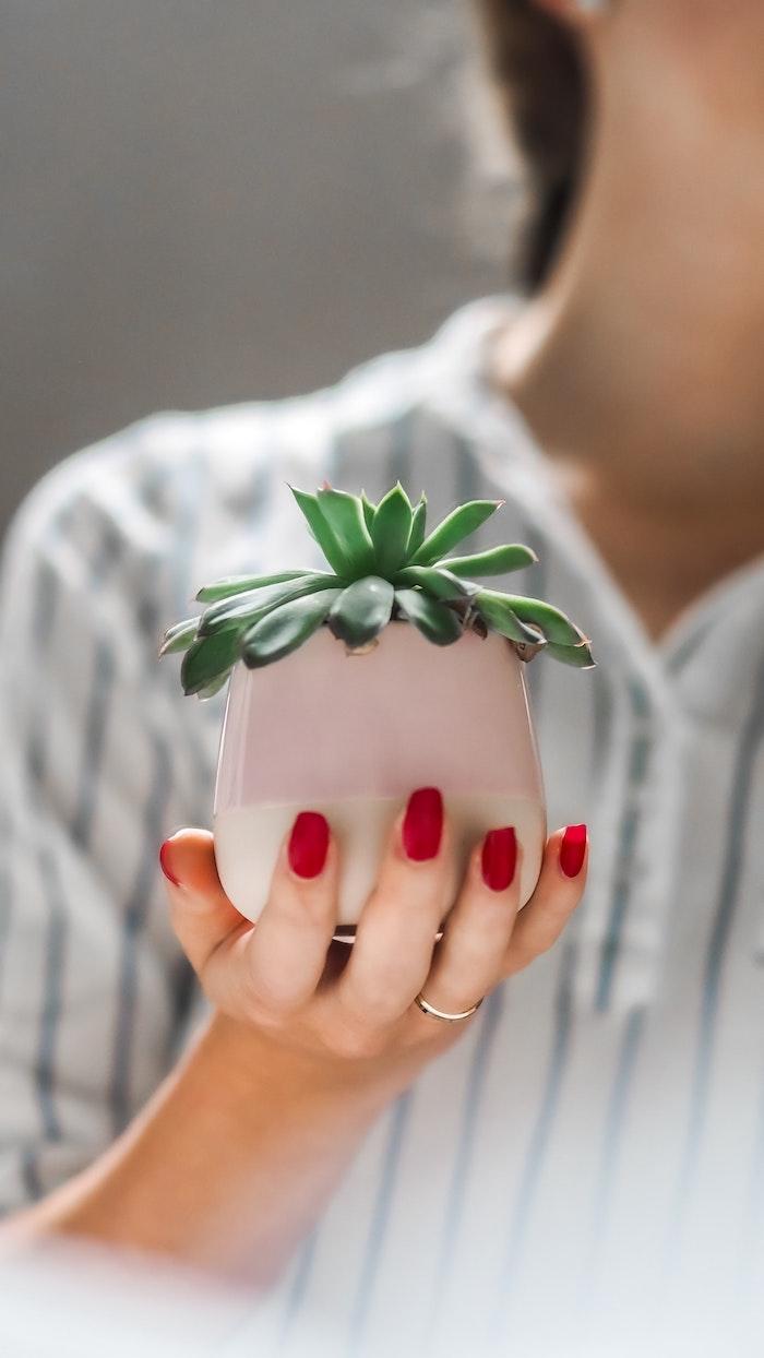 frau mit einem kleinen pinken blumentopf mit grünen sukkulenten eine hand mit ring und mit einem roten nagellack