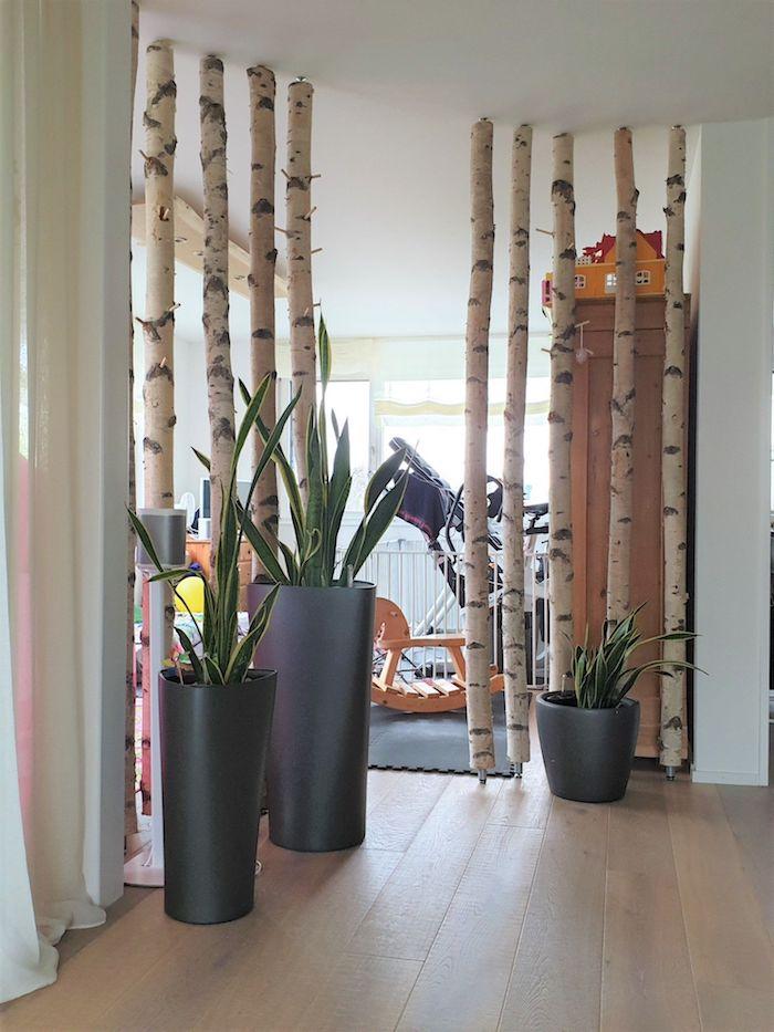 große schwarze vase mit grünen kakteen birkenstamm raumteiler originelle ideen raum teilen kleiderschrank holz inneneinrichtung inspiration
