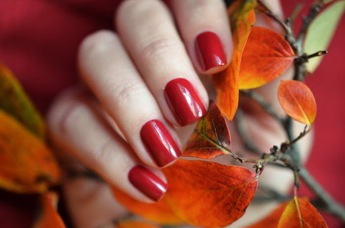 hand einer frau mit ast mit gelben und orangen blättern ideen für nageldesign für den herbst roter nagellack