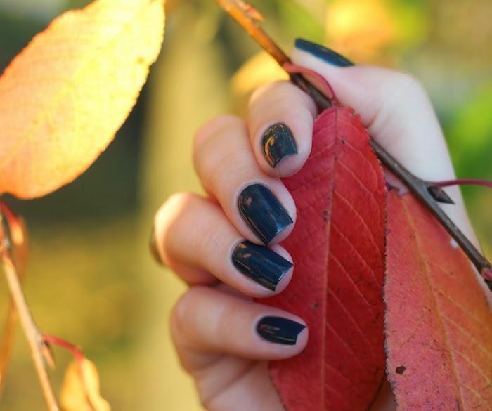 hand mit einem dunkelblauen nagellack design ein ast mit gelben und roten blättern ideen für nageldesign herbst